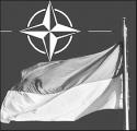 В Беларуси выполняются все заявки ветеранов ВОВ - Щеткина