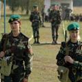 Пресечена попытка вывоза белорусских девушек за границу для оказания интимных услуг