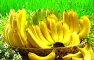 Бананы за месяц подорожали на 80%