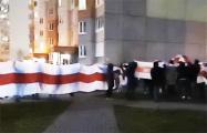 Боровляны вышли на мощный марш с огромным национальным флагом