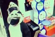 Грабители в костюмах панд ограбили британский газетный киоск