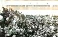 В Израиле обрушилась трибуна синагоги, где находилось много людей