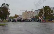 В Жодино протестующие перекрыли дорогу