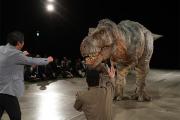 Доказана невозможность воскрешения динозавров