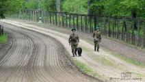 Белорусские и латвийские пограничники задержали группу нарушителей