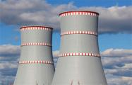 Министр энергетики Литвы: Будущее БелАЭС зависит от политической ситуации в стране, которая может измениться