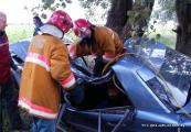 Водитель без прав в Витебском районе врезался в дерево, пассажирка погибла