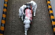 Коронавирус в Поставах: количество зараженных за сутки увеличилось вдвое