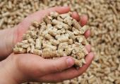 Кредит на комбикорм. Беларусбанк и Белагропромбанк продолжат кредитовать рыбхозы