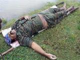 """""""Тамильские тигры"""" признали гибель своего лидера"""