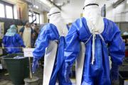 КНДР ввела карантин для въезжающих из стран с эпидемией Эболы