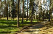 Россиянка о белорусском санатории: бюрократия, очереди и допотопное оборудование