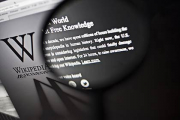 Роскомнадзор заблокирует пять страниц Википедии о наркотиках