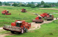 Мобильные группы в январе-июне выявили в АПК и строительстве 44 тыс. нарушений охраны труда