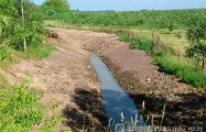 Жители деревни под Гродно в жару остались без воды