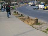 Российский дипломат сбил девушку на улице Бухареста