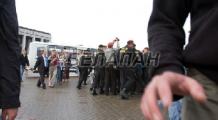Медведи вышли и к посольству Беларуси в Чехии (Фото)