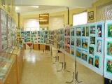 Музей частных коллекций планируется создать в Минске