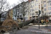 Жертвами урагана «Никлас» в Европе стали девять человек