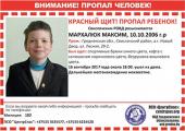 Кто и где продолжает поиски 11-летнего Максима Мархалюка