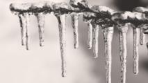 В Беларусь идет резкое потепление