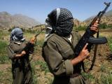 Турецкая армия уничтожила 100 курдских боевиков за неделю