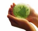Экологи требуют отменить постановление Совмина