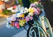 Доставка цветов по всей России для самых ярких эмоций