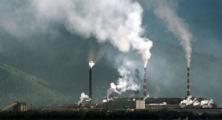 Жители Светлогорска собирают подписи против нового завода (Видео)