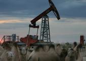 Российские СМИ: казахстанские компании не проявляют энтузиазма в отношении поставок нефти в Беларусь