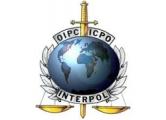 Белорусские политбеженцы во Франции обратились к генсеку Интерпола