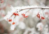 Мороз до минус 16 ожидается в Беларуси