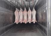Россельхознадзор отмечает существенное увеличение потока животноводческой продукции из Беларуси