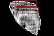 Физики научились читать поврежденные древним вулканом рукописи