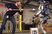 Блогеры предрекли человечеству гибель из-за мести роботов