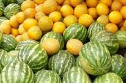 Покупать арбузы и дыни можно только в местах санкционированной торговли