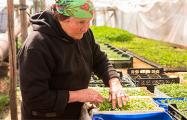 Как 78-летняя фермер из-под Малориты гоняет на тракторе и складывает печи
