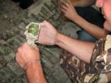 На белорусско-польской границе обнаружен арсенал боеприпасов времен Второй мировой войны