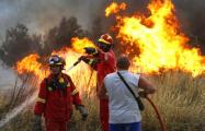 В Греции туристы от пожаров спасались в море