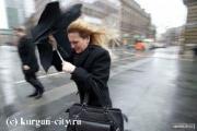 Штормовое предупреждение объявлено в Беларуси