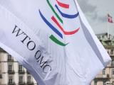 Беларусь обновила ряд документов по подготовке к вступлению в ВТО