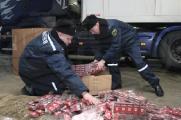 Более 96 кг взрывчатки найдено в схроне возле белорусско-польской границы
