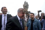 Президенту Турции на голову села куропатка