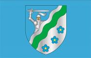 У Могилевского района будет голубой флаг с варяжским щитом