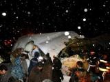 При крушении самолета в Иране погибли 70 человек