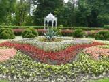 Центральный ботанический сад Беларуси приглашает любителей орхидей на учебные мастерские