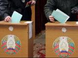 Нарушения на выборах в Беларуси созданы отдельными наблюдателями на пустом месте для самопиара