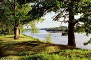 Сформировать привлекательную для интуристов и охотников среду Беларусь может за 2-3 года - БООР
