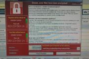 МВД и СК России опровергли сообщения о заражении своих серверов вирусом WannaCry