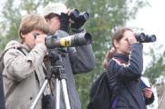 Участники Европейских осенних дней наблюдений за птицами насчитали в Беларуси 112 видов пернатых